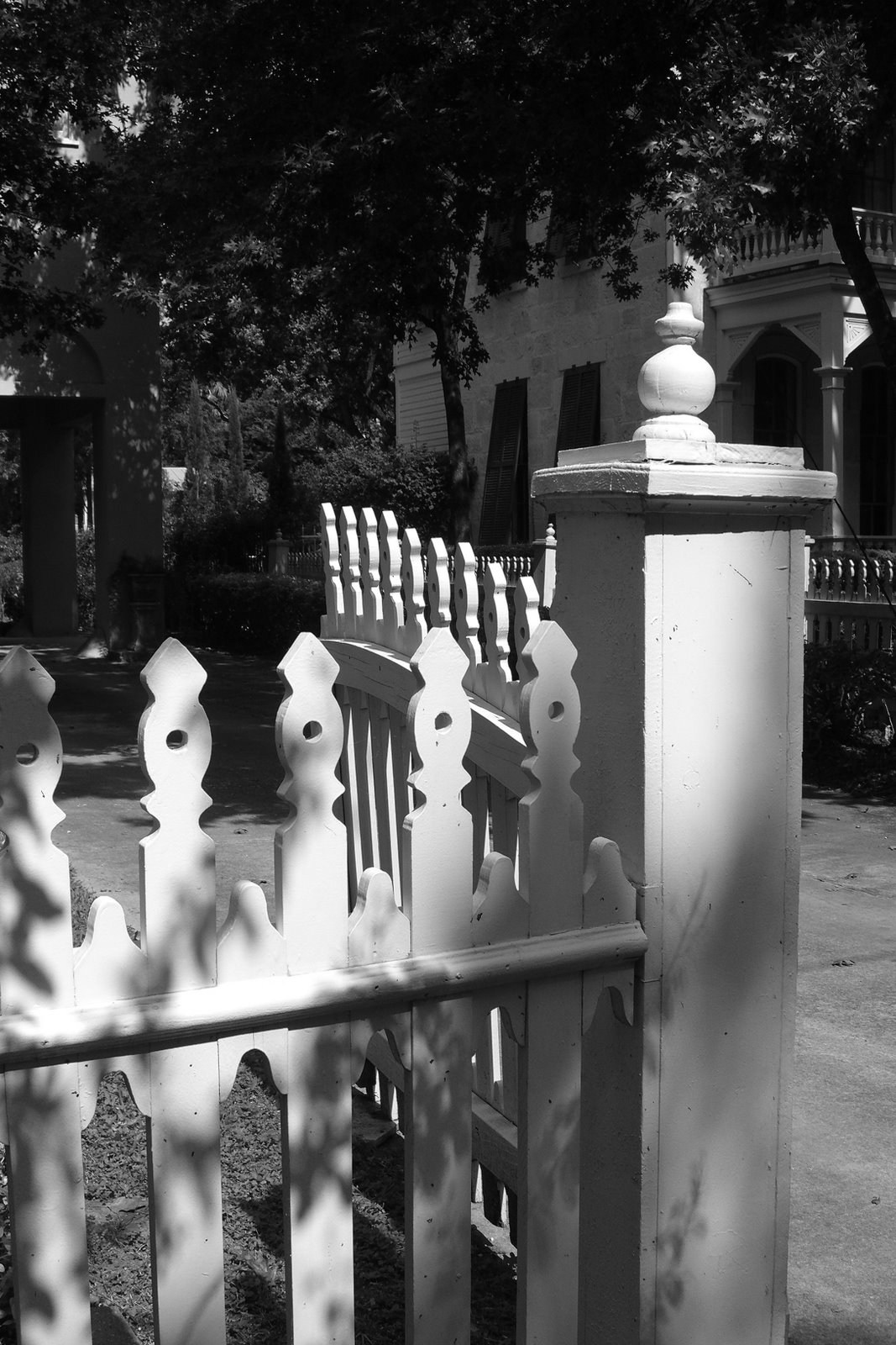 Picture Of The Week Picket Fence
